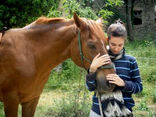 06-hablando-con-animales