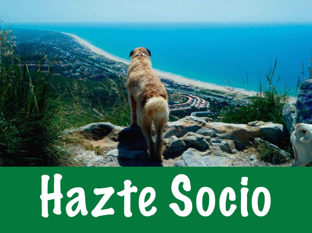 Hazte-Socio-Fundacion-Trifolium