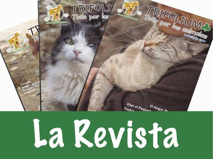 revista trifolium