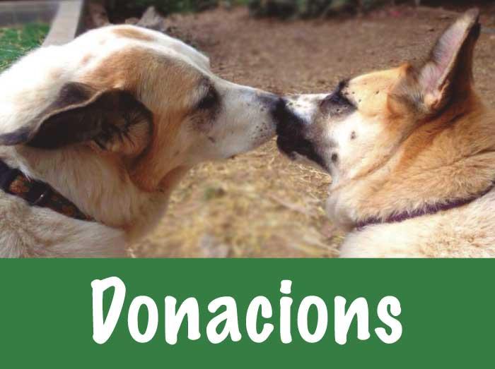 donacions trifolium